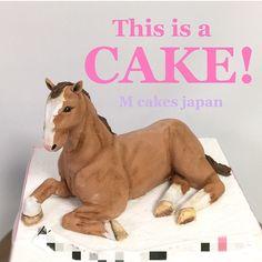 ザ・馬 ケーキ!! お客様のイメージそっくりに製作させていただきました❤️ 出来上がった大きさが、子犬チワワ位✨ 私は名ずけましたその名も「マイクロミニ馬」!! 実際にマイクロミニ馬がいたら可愛すぎて大人気だろうな〜っ私も欲しいな〜マイクロミニ馬大分妄想気味のケーキ製作 #馬 #マイクロ #ミニ #ウマ #誕生日ケーキ #horsecake #horse #sculptedcake #sugarart #fondantcake #シュガーアート #サプライズ #ビックリ #面白 #ケーキ #japan #お座り