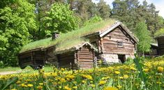 small homes in the alps | Telhados Verdes