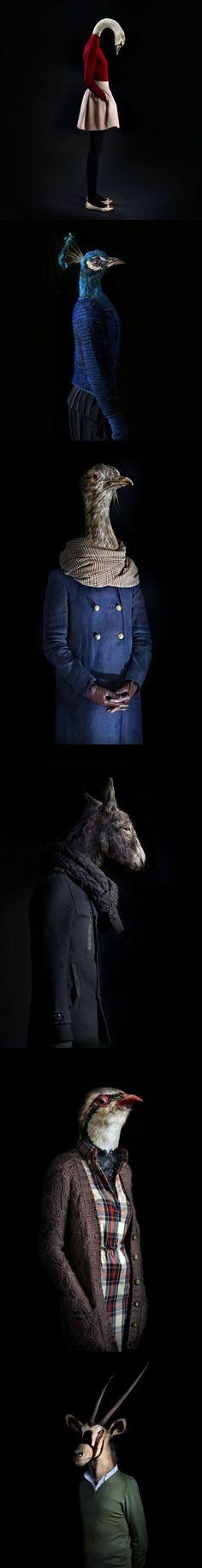 Animal Human Photo manipulations arts