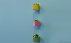 Spring is right around the corner and the flowers will be blooming soon! Create colorful upcycled planters using small milk cartons and cording!