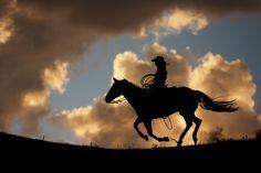 Cowgirl Silhouette, Black Hills Photo Shootout 2011