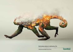 These Thought Provoking Double Exposure Ads Illustrate The Destruction Of Wildlife - UltraLinx