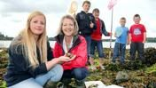 sun 15 sept 2013 - bbc summer of wildlife event at castle ward - over 20 free activities