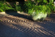 Chanticleer Garden What's in Bloom - October 10, 2014