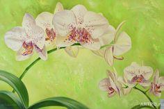 Gallery.ru / Фото #99 - цветы в акварели - ninmix