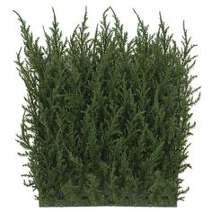 Combine your creativity with the Square Outdoor Cypress Hedge Wall Mat, and you'll be amazed at what you can create! Perfect for everything from special events decorating to residential and commercial landscaping design, these artificial boxwood h Artificial Green Wall, Artificial Hedges, Artificial Boxwood, Artificial Plants, Commercial Landscape Design, Commercial Landscaping, Modern Landscaping, Landscaping Design, Above Ground Pool Landscaping