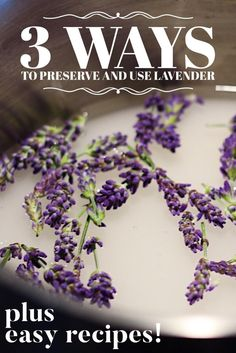 3 easy ways to preserve lavender syrup dried vodka extract recipe recipe pruning growing french english spanish westcoast potager edible garden gardening Edible Lavender, Lavender Crafts, Lavender Syrup, Lavender Flowers, Edible Flowers, Lavender Oil, Lavender Essential Oil Uses, Cooking Herbs, Cooking Tips