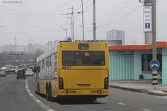 Кличко узаконил выделенную полосу для общественного транспорта