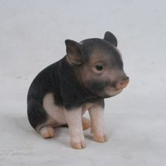 Shop Hi-Line Gift Dark Brown Sitting Baby Pig at Lowe's Canada. Find our selection of garden statues at the lowest price guaranteed with price match. Cute Baby Pigs, Cute Baby Animals, Animals And Pets, Cute Babies, Funny Animals, Pig Wallpaper, Fluffy Cows, Mini Pigs, Brown Babies