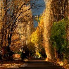 Ullum, San Juan, Argentina
