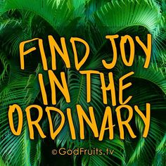 Find joy in everyday, not because life is always good, but because God is!!! #Faith #Hope #Love #Godfruitstv