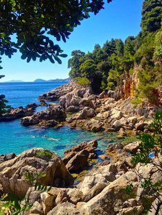 Lokrum Island in Croatia. Definitely a must visit. Just look at that water.