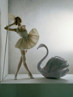 everyday_i_show: photos by Tim Walker