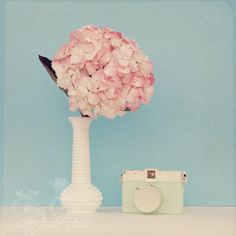 Floral Fine Art Photograph, Pink Hydrangea Flowers in a Milk Glass Vase with Vintage Camera, Shabby Chic Art,  Still Life, Square 8x8Print