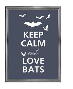 Yeah so I love bats incase you didn't know