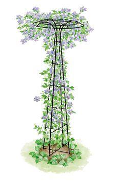 For Clematis or Mandevilla - Garden Trellis: Essex Umbrella Shaped Tuteur Gardener's Supply Garden Art, Garden Design, Tower Garden, Plant Supports, Garden Trellis, Wisteria Trellis, Obelisk Trellis, Wall Trellis, Bean Trellis