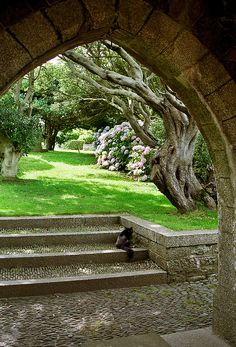 St Michael's Mount Gardens, Cornwall, UK: