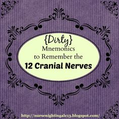 {Dirty} Mnemonics to Remember the 12 Cranial Nerves. Nurse Nightingale blog post about helpful mnemonics to remember the order of the 12 cranial nerves and their function. This blog is full of tips for nursing students and new nurses!
