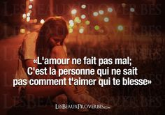 L'amour Perdu !!                                                                                                                                                     Plus