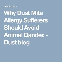 Why Dust Mite Allergy Sufferers Should Avoid Animal Dander. - Dust blog
