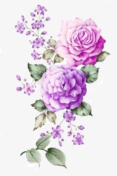 Rose,Ink