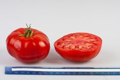 Martin Tomato has a delicate sweet and acid flavor. Suitable for greenhouse and open field. Marmande type with very dark green, ribbed shoulders. For best flavor, harvest when shoulders are green. Uniform, 8-9 oz. fruits. Indeterminate.