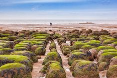 15 Best Things to Do in Hunstanton (Norfolk, England) - The Crazy Tourist Norfolk Beach, Stuff To Do, Things To Do, Norfolk England, British Countryside, Seaside Resort, North Sea, Pebble Beach, East Coast