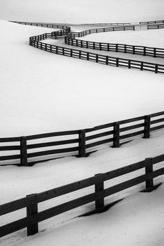 Naked News Girl - djabal: Crazy Beatiful Fences by Sandra Herber. Black And White Colour, Black White Stripes, Chain Link Fence, Winter Images, Photo B, Winter Beauty, Fence Design, Winter Scenes, Winter White