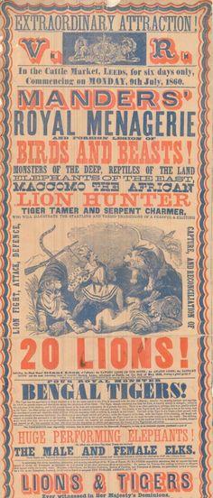 Posters - Manders' Royal Menagerie Vintage circus poster