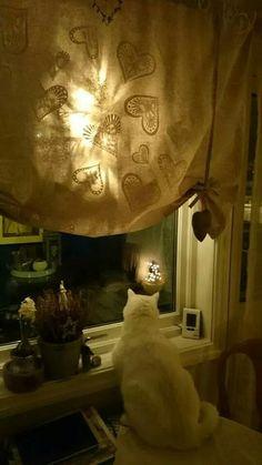 Simon.. Watching and guarding..