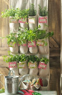 The Curated Eight: DIY Herb Gardens. I love this idea. Nice way to take up a lot less space then pots on the ground :)