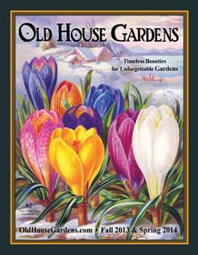 Old House Gardens Heirloom Bulbs