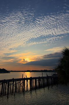 carrabelle [fl] _ Florida's Forgotten Coast _ For vacation rentals in this area, visit www.facebook.com/debsrentals or www.alreadygonefishing.com.  #vacation #rental #travel