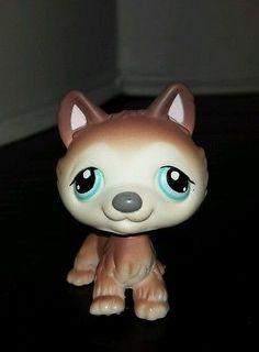 Littlest Pet Shop Dog Husky Brown White Blue Eyes #68 Preowned LPS
