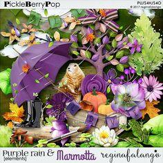 PURPLE RAIN AND THE MARMOTTA ELEMENTS