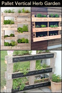Your DIY vertical herb garden will need some attention in the beginning, by setting everything up and planting the herbs you will need, but after that is becomes easier to manage the herb garden, by watering the plants and cutting any excess foliage or dry ends. Some herbs work better when dried, so you may need a place where to do so, but others better used when fresh, so it is more practical as you only need to get the herb from your vertical planters and add it to the dish you are… Jardin Vertical Diy, Vertical Garden Wall, Herb Garden Pallet, Pallets Garden, Pallet Gardening, Culture D'herbes, Vertical Vegetable Gardens, Types Of Herbs, Pot Jardin
