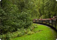 All Aboard! 10 Reasons to Travel by Train