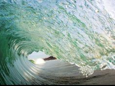 The perfect wave!