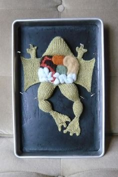 Haha Oh, you can find anything on Etsy! Knitted Dissected Frog - AKNITomy