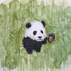 #watercolor #panda #bear
