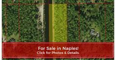 Up-to-date photos, maps, schools, neighborhood info. & details for 12th Avenue SE, Naples, FL