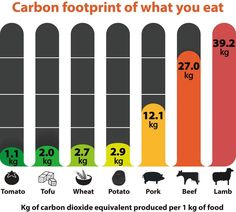 carbon footprint of what you eat #eco