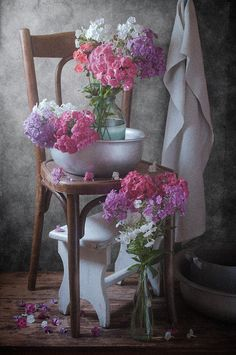 http://pixels.com/products/season-of-phlox-nikolay-panov-art-print.html floral still life photography with few bouquets of fresh star-shaped colorful phlox flowers when in bloom standing on vintage chair in rustic summer house.