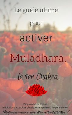 Chakra Meditation 719731584173507156 - Equilibrer Muladhara, le chakra Source by alizaakki Easy Meditation, Chakra Meditation, Mindfulness Meditation, Guided Meditation, Yoga Kundalini, Mantra, Muladhara Chakra, Reiki Room, Les Chakras
