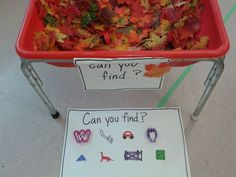 I Spy Fall Sensory Bin - Use a rake to find the items hiding under the leaves and acorns