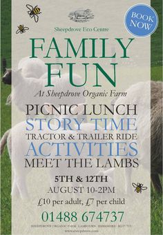 Family Fun for the Summer Holidays at Sheepdrove Organic Farm in Berkshire