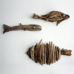fish using driftwood