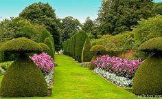 Google Image Result for http://sofotos.org/fotos/paisagismo-e-jardinagem/paisagismo-e-jardins.jpg