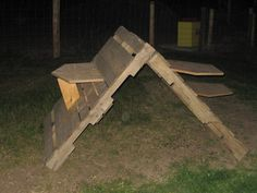 Goat Play Structures | and a play structure that the guy my son purchased them from gave them
