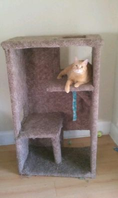 DIY Cat tree   Old bookshelf + leftover carpet = great upcycled cat tree